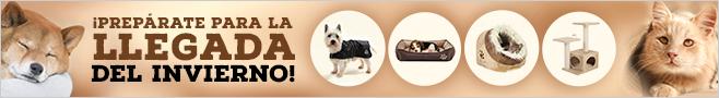 Ofertas accesorios perro y gato otoño