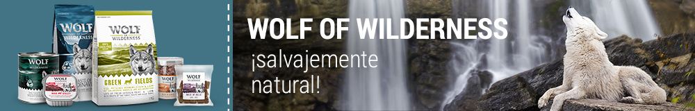 Wolf of Wilderness pienso para perros