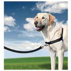 Arneses antitirones para perros