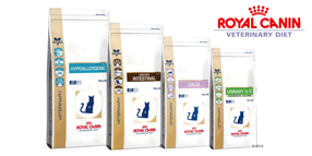 Royal Canin Veterinary Diet pienso gatos